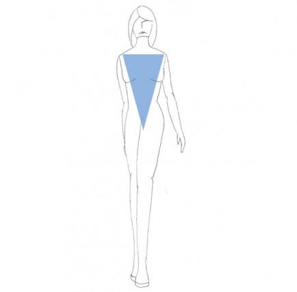 types de morphologies V