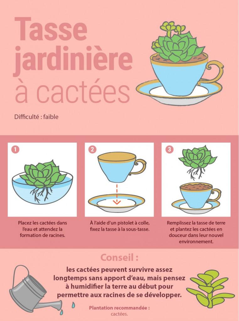 8 façons originales de présenter vos plantes d'intérieur 5