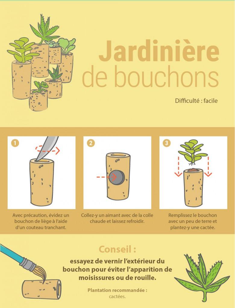 8 façons originales de présenter vos plantes d'intérieur 7