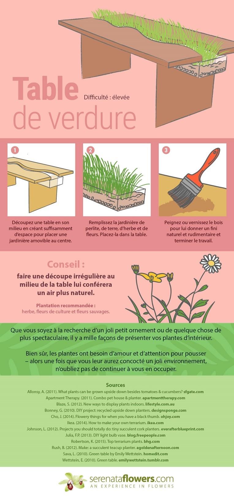 8 façons originales de présenter vos plantes d'intérieur 8