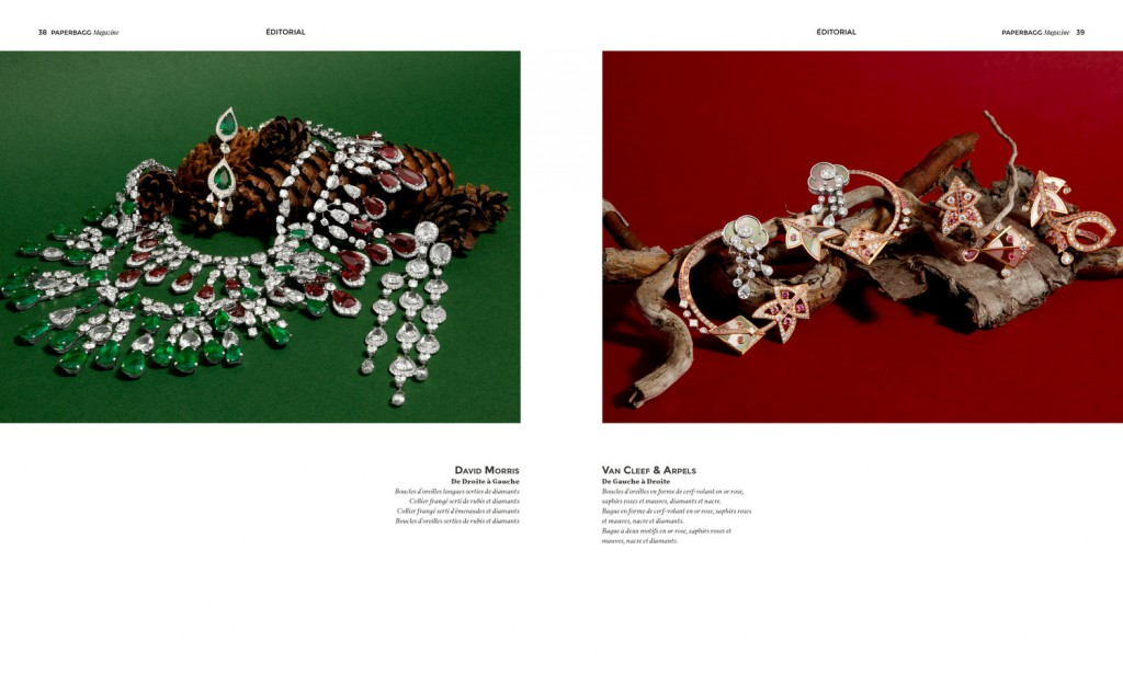 PAPERBAGG magazine Issue N°3 Nature Précieuse Editorial 2
