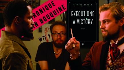 BookTubers, Les Critiques littéraires 2.0 Rouquin