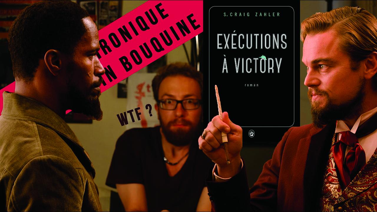 BookTubers, Les Critiques littéraires 2.0